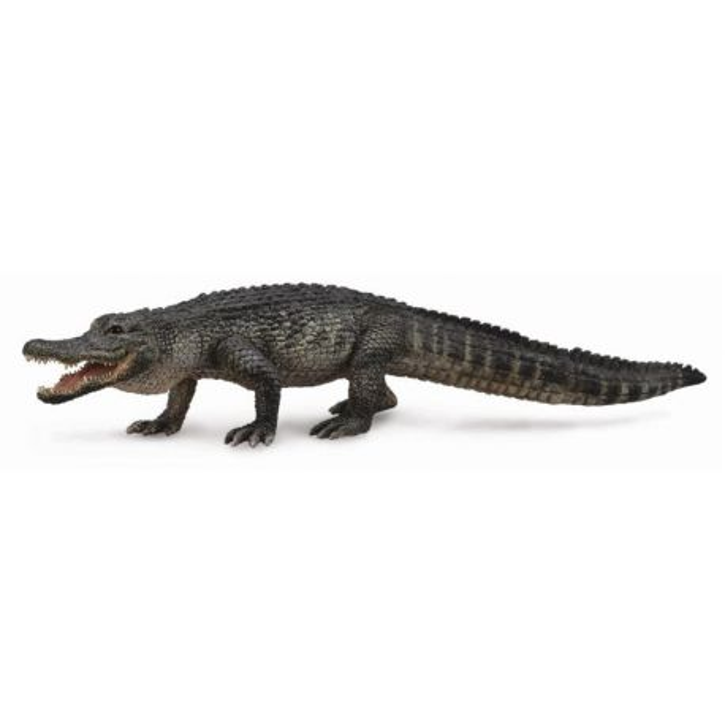 CollectA 88609 - Aligator amerykański missisipijski