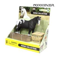 CollectA 88280 - Koń z poidłem i sianem