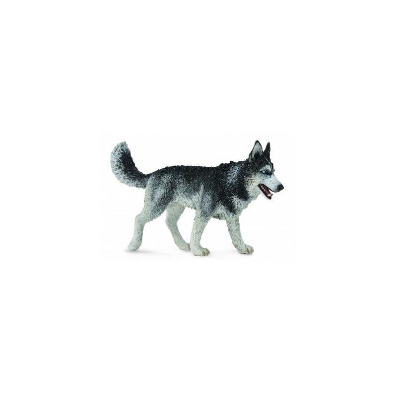 CollectA 88707 - Husky syberyjski pies