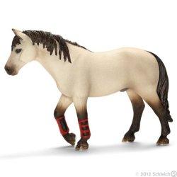 Schleich 13706 - Koń treningowy