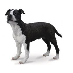CollectA 88610 - Pies Amstaff American Staffordshire Terrier
