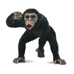 CollectA 88492 - Szympans samiec