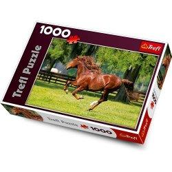 Puzzle Trefl 1000 - Koń w galopie