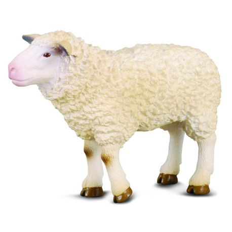 CollectA 88008 - Owca domowa samica