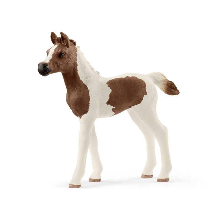 Schleich 13839 - Koń Pintabian źrebię