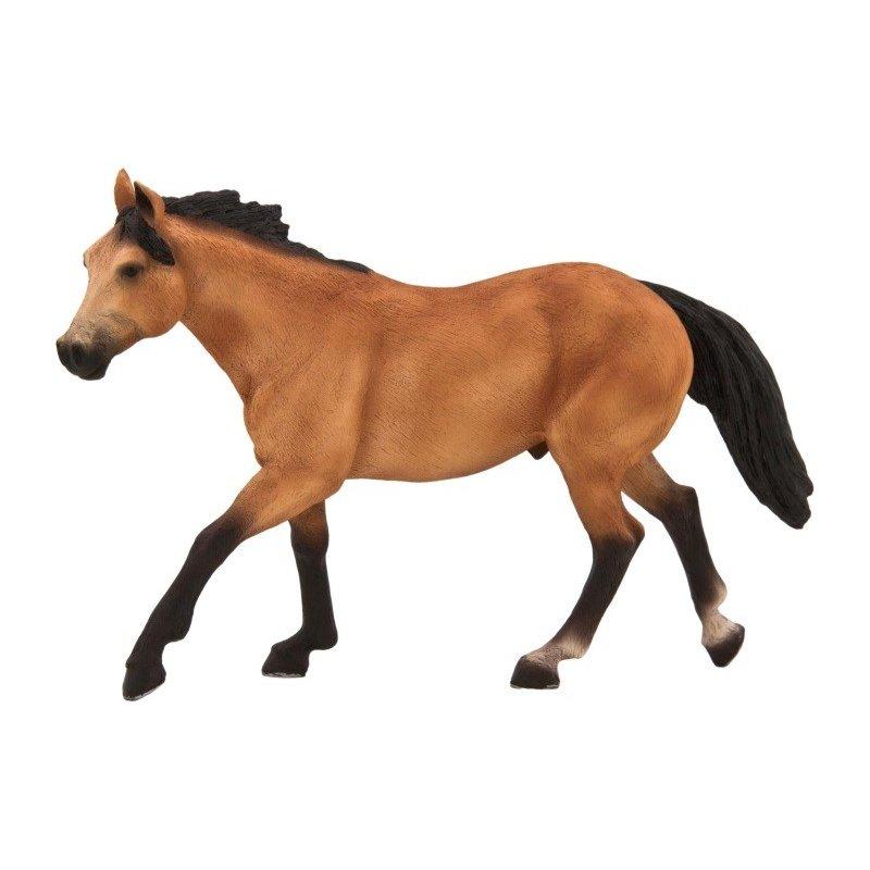 Mojo 387121 - Ogier Quarter Horse bułany