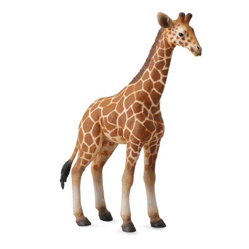 CollectA 88535 - Żyrafa siatkowana somalijska cielę
