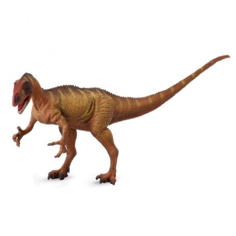 CollectA 88525 - Dinozaur Neowenator Deluxe 1:40