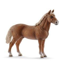 Schleich 13869 - Koń rasy Morgan ogier