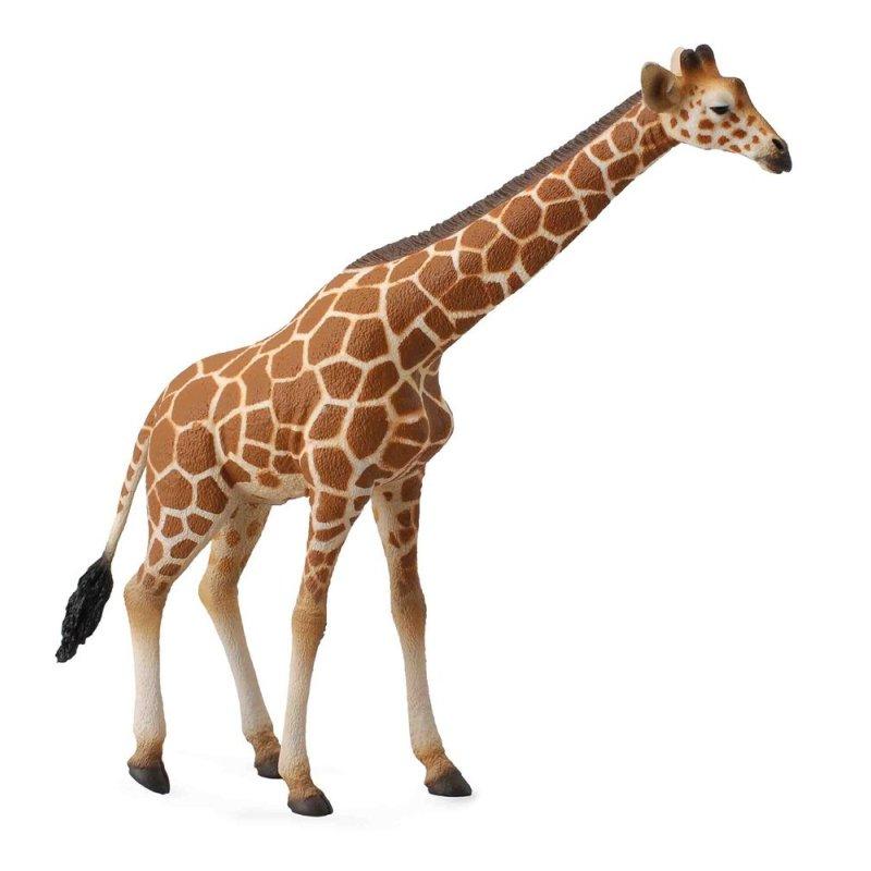 CollectA 88534 - Żyrafa siatkowana somalijska samiec
