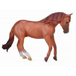 CollectA 88712 - Ogier Australian Stock Horse kasztanowaty