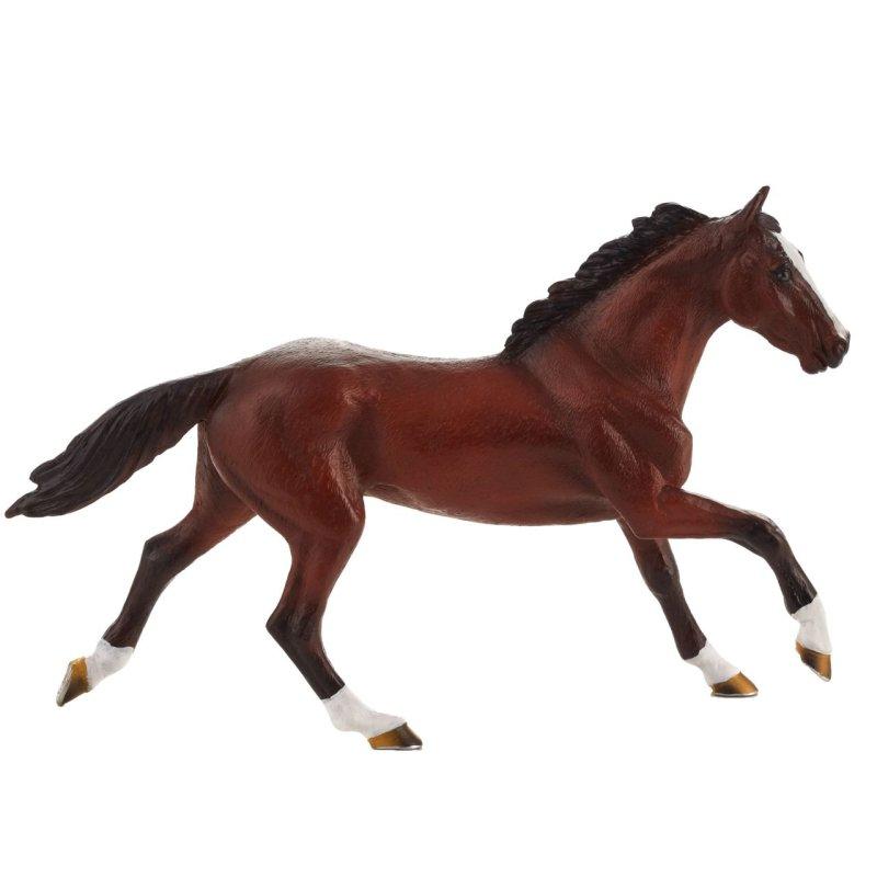 Mojo 387291 - Koń pełnej krwi angielskiej ogier