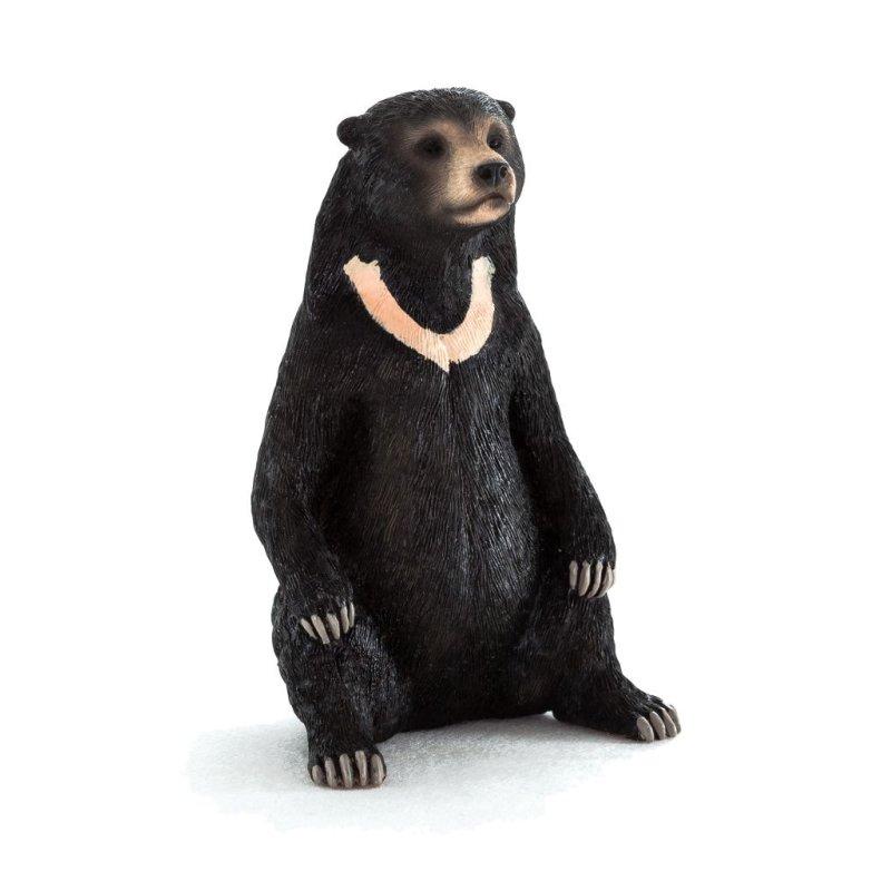 Mojo 387173 - Niedźwiedź biruang malajski