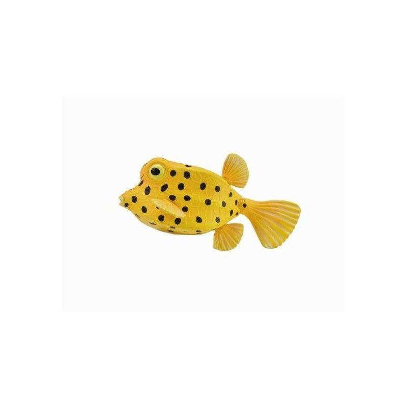 CollectA 88788 - Kostera gruzełkowata ryba