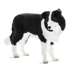 Mojo 387203 - Pies rasy Border Collie