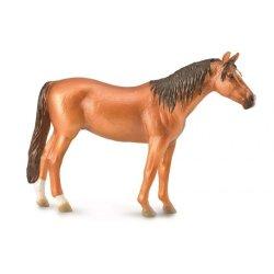 CollectA 88847 - Koń doński klacz