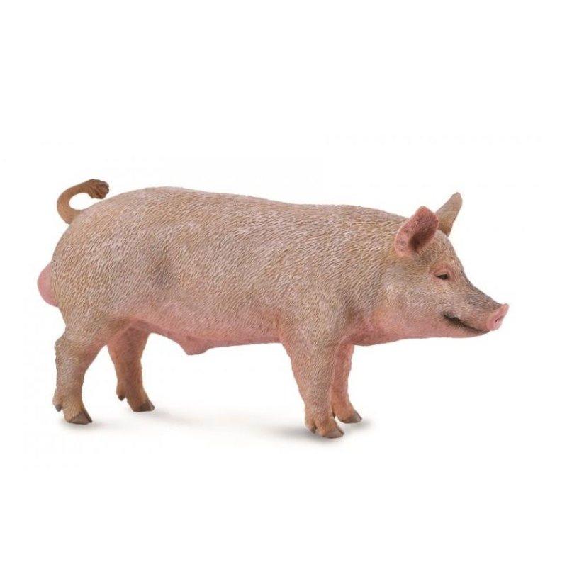 Collecta 88864 - Świnia samiec knur