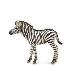 CollectA 88850 - Zebra źrebię