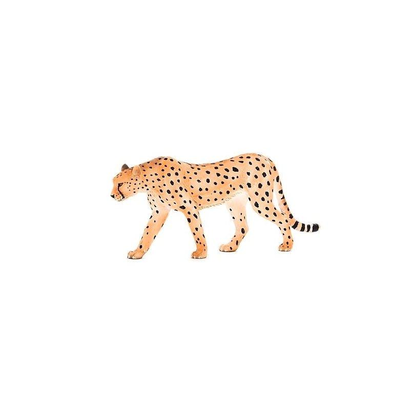 Mojo 387197 - Gepard grzywiasty samiec wersja A