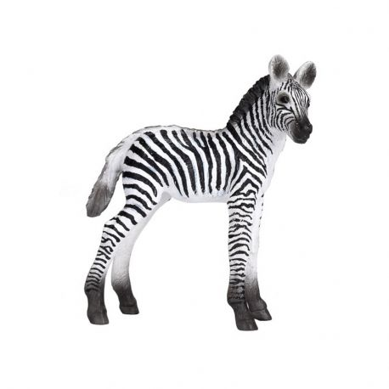 Mojo 387394 - Zebra źrebię