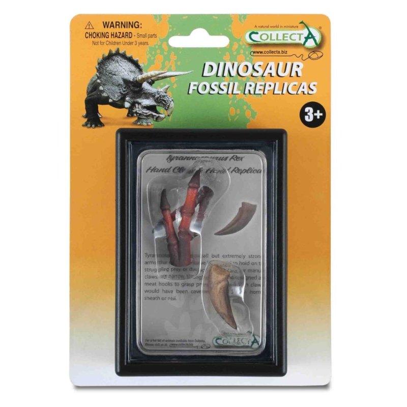 CollectA 89289 - Tyranozaur Rex szpon i kości dłoni replika gablota